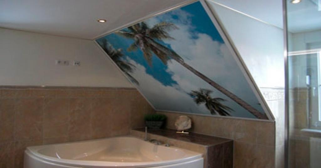 Badkamer Design Limburg : Badkamer plafonds - Een nieuw plafond in de ...
